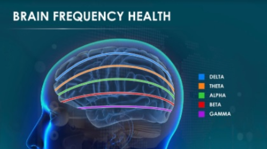 brainwave frequency
